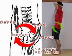 膝痛ブログ6