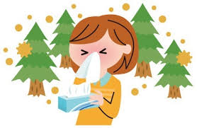花粉症 健康ブログ2