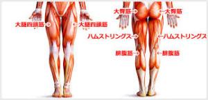 筋肉の硬さ